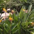 Hawaii_046