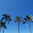 Hawaii_124